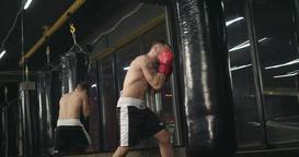 Boxer training punching bag 4k video. Fighter blows jab cross punch series Footage