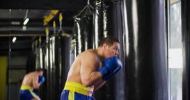 Boxer training punching bag 4k video. Fighter fulfills jab cross punch series Footage