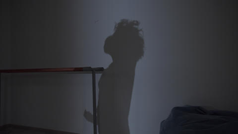 Shadow on the wall of a theater school or ballet school. Girl dancer sensually Live Action