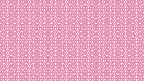 和柄 日本の伝統模様 文様 紋様 CG動画
