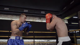Boxers start fight training in boxing ring HD slow motion sparring video Footage