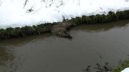 Large debris in dirty channel, trashed supermarket trolley sink in muddy flow Footage