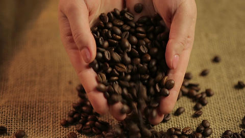 Female hands pouring roasted coffee beans on cloth, gourmet taste of espresso Live Action
