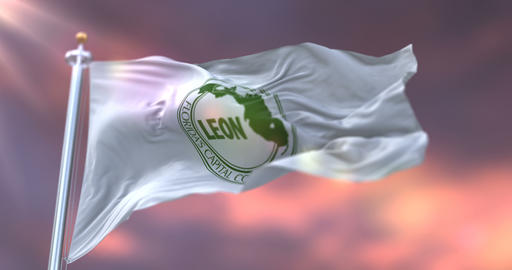 Flag of Leon at sunset, county of the state of Florida, in United States - loop Animation