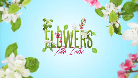 Spring Flowers Intro After Effects Template