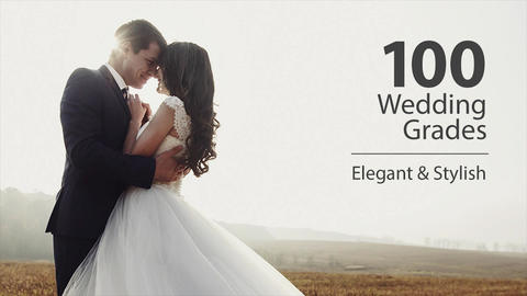 Wedding Color Corrections Apple Motion Template