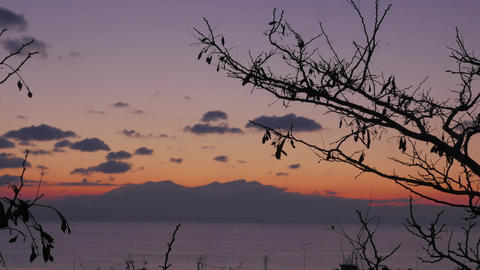 Timelapse in Nea Kallikratia, Greece at sunset seen branch of tree, sea, beautif Footage