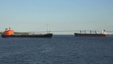 Cargo Ships And Suspension Bridge Live Action
