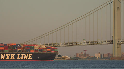 Cargo Ship And Suspension Bridge Live Action