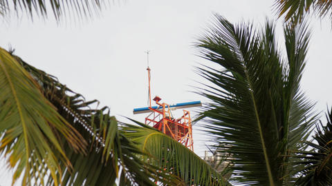 Meteorological station view through palm tree leaves Live Action