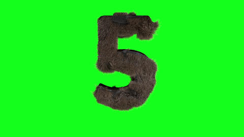 Abstract number digit 5 five sign hairy number 5 five green screen 5 five green screen hairy green Animation