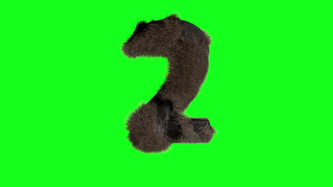 Abstract number digit 2 two sign hairy number 2 two green screen 12 two Animation
