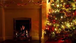 Christmas Living Room Footage
