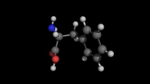 phenylalanine molecule model rotating Animation