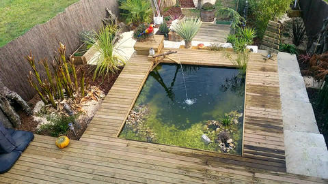 Rectangular Garden Pond With Water Fountain And Plants Footage