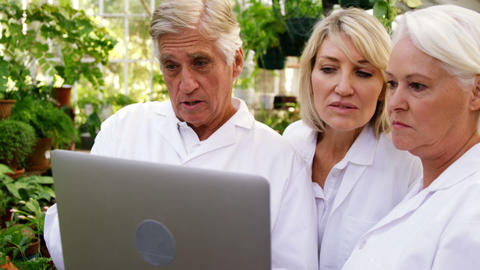 Scientists having discussion on laptop Footage