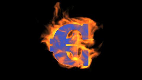 Euro symbol,fire Animation
