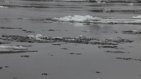 ice flow on river Footage