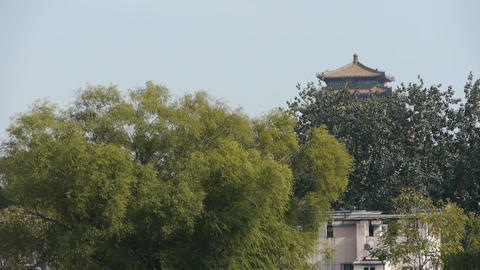 China ancient architecture & Forest in Beijing china Footage