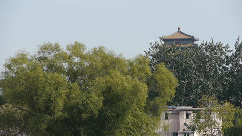 China ancient architecture & Forest in Beijing china Stock Video Footage