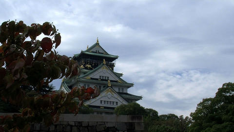 osaka castle slide Stock Video Footage