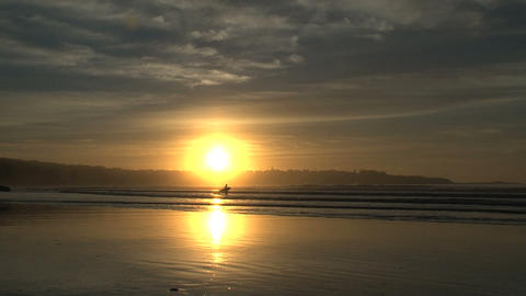 surfer walking in to the water, sunrise Stock Video Footage