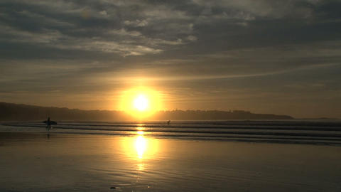 surfer walking in to the water, sunrise Footage