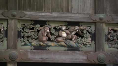 Three monkeys zoomout Footage