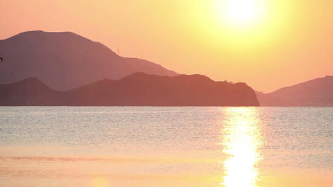 Flying seagull in the sea at sunrise Stock Video Footage