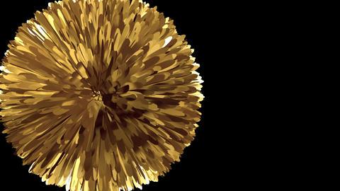 Golden Pompon - Transition - Alpha Animation