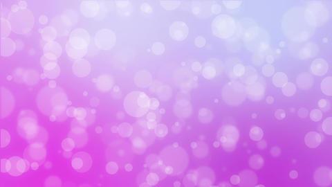 Purple pink bokeh holiday background Animation