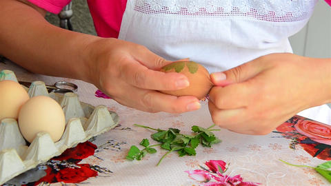 Cook applying green leaves over a boiled egg and wrap it with a nylon stockings  Footage