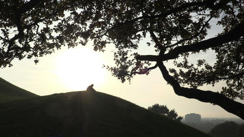 Silhouettes of people on top of the hill Footage