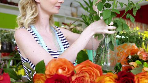 Female florist arranging roses in flower vase at flower shop Footage