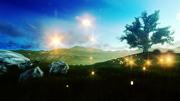 Fireflies over green meadow and tree of life at morning Stock Video Footage