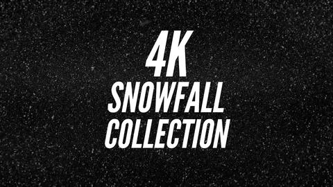 Snowfall 4k Collection 29 Clips After Effects Template