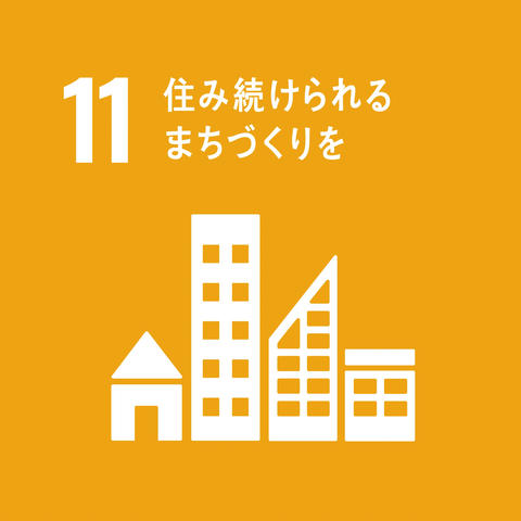 SDGs 11 SUSTAINABLE CITIES AND COMMUNITIES Live Action