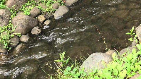 A small river in rural Japan Live Action
