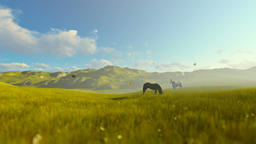 Two horses on green meadow, beautiful morning Animation