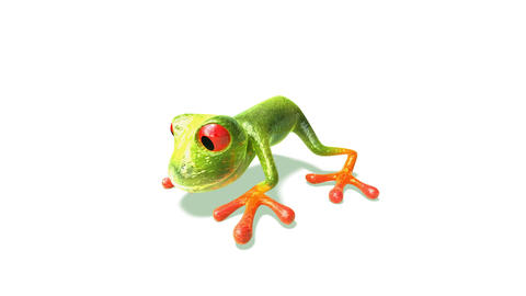 frog2 Stock Video Footage