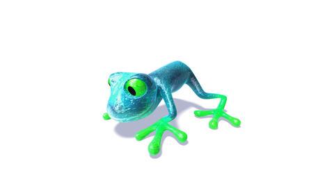 frog4 Animation