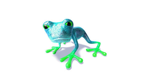 frog4 Stock Video Footage