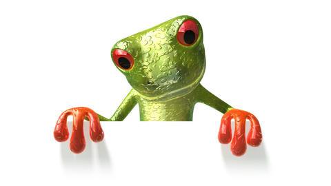 frogpanneau1 Stock Video Footage