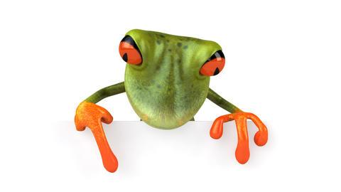 frog ettepanneau 1080 Stock Video Footage