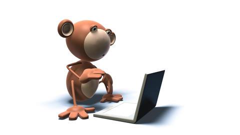 monkey 02 Stock Video Footage