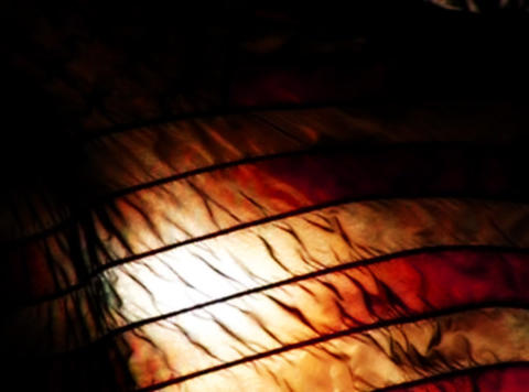American Flag Sunset 06 Loop Stock Video Footage