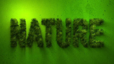 Nature word made of grass Stock Video Footage