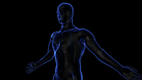 Human Body stock footage