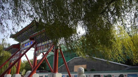 swing willow & orient ancient Memorial arch in... Stock Video Footage