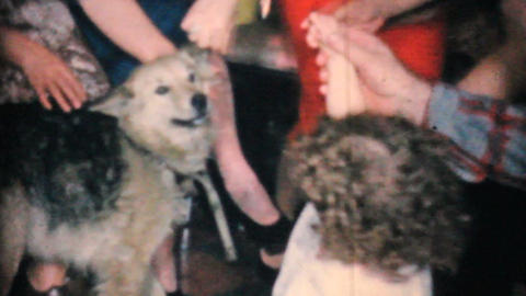 Feeding A Dog At The Party 1964 Vintage 8mm film Footage